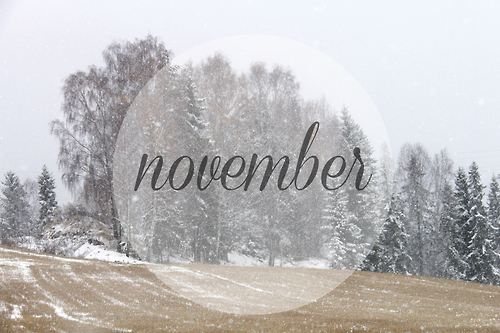hiver neige novembre