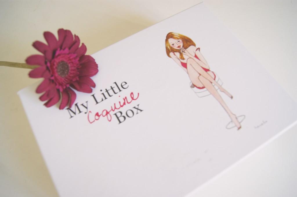 my little coquine box février 2013