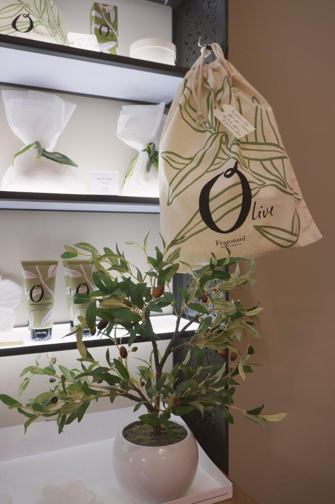 gamme olivier fragonard