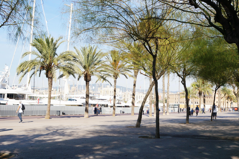 barcelone cityguide