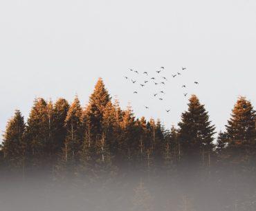 Mes 8 bonnes raisons de me réjouir de l'arrivée de l'automne